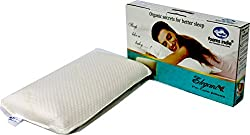 Foamsindia® Brands Natural Latex Elegant Pillows 24 x 14 x 4