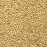 Millet, Biologically Grown Non-GMO, 50 Lb Bag