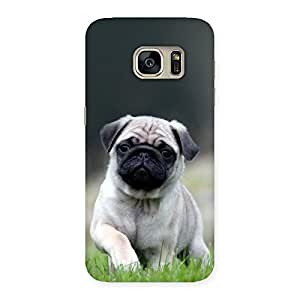 Special Pug Dog Grass Multicolor Back Case Cover for Galaxy S7