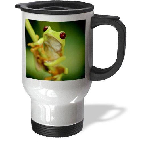 3Drose Green Tree Frog On A Twig Travel Mug, 14-Ounce