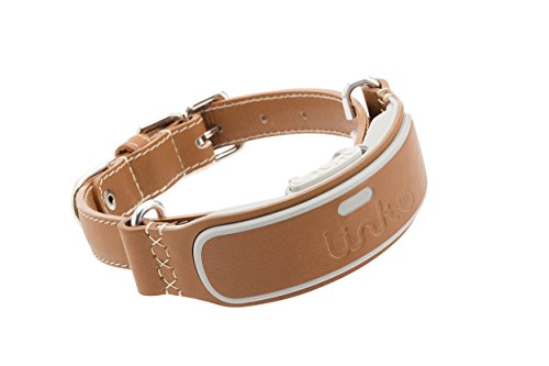 LINK-AKC-Smart-Dog-Collar-GPS-Location-Tracker-Activity-Monitor-and-More-Large-KITTN03