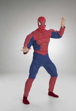 Spiderman Deluxe Costume Muscle Chest Adult
