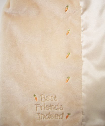 Bunnies By The Bay Blanket front-1029074