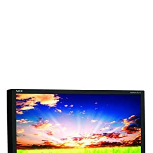 NEC Display Solutions P221W-BK 22-Inch 8ms(GTG) 300 cd/m2 1000:1 Widescreen LCD Monitor (Black)
