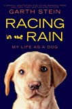 img - for Racing in the Rain book / textbook / text book