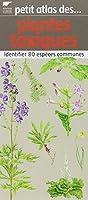 Petit atlas des plantes toxiques : Identifier 80 espèces communes