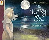 Martin Waddell The Big Big Sea