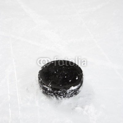 """Wallmonkeys Peel and Stick Wall Decals - Hockey Puck on Ice. - 48""""H x 48""""W Removable Graphic"""