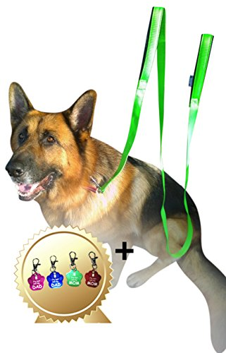 Artikelbild: Jet Storm Grün Haustier Hundeleinen mit 2 Handgriffen für großen oder mittelgroßen Hund Bonus Tag