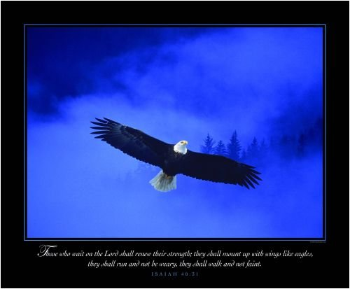 christian quotes about eagles quotesgram