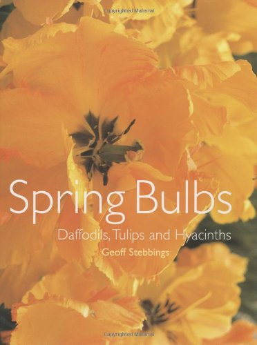 Spring Bulbs: Daffodils, Tulips and Hyacinths