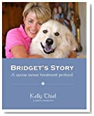 Bridget's Story -- A Canine Cancer Treatment Protocol