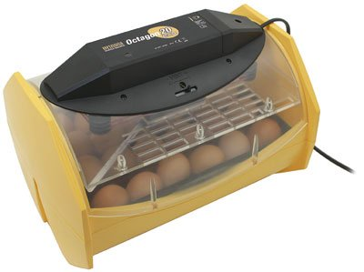 Brinsea Octagon 20 ECO Manual Turn Egg Incubator
