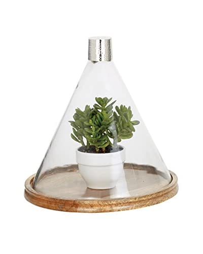 Torre & Tagus Large Sienna Tapered Glass Dome on Wooden Base