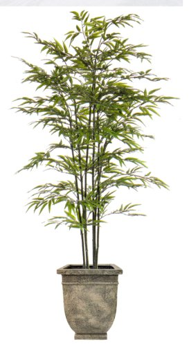 5FT BLACK BAMBOO TREE/2PC