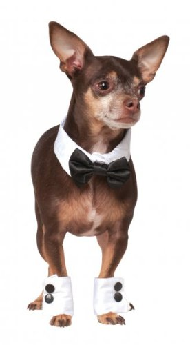 Rubies Costume Company Bowtie and Cuff Set Pet Accessories, Small/Medium