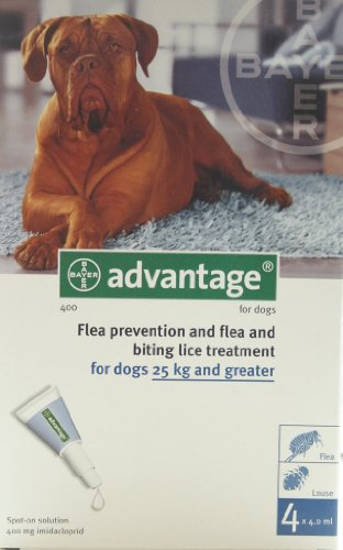 advantage-400-for-dogs