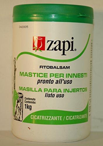 masilla-cicatrizante-para-heridas-de-poda-e-injertos-1-kg