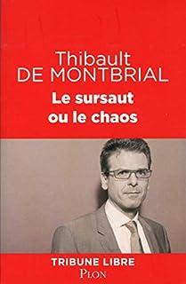 Le sursaut ou le chaos, Montbrial, Thibault de