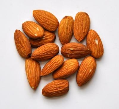 無植物油 almond biscuit unsalted 1 kg manufacture direct sales