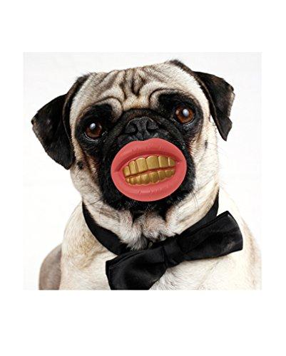 Artikelbild: Hundespielzeug Lachschnuller