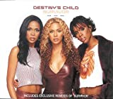 Destiny's Child Survivor [CD 1]