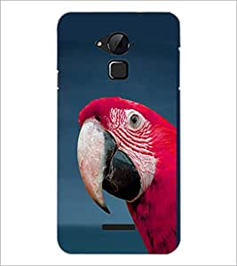 PrintDhaba Parraot D-1982 Back Case Cover for COOLPAD NOTE 3 LITE (Multi-Coloured)