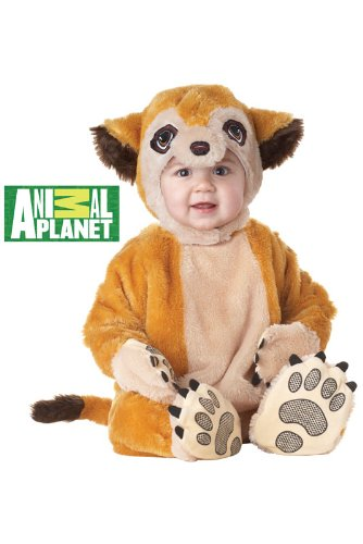 California Costumes Meerkat Infant Jumpsuit, Brown, 12-18 Costume