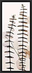 12in x 26in Eucalypti III by Steven N Meyers - Black Floater Framed Canvas w/ BRUSHSTROKES