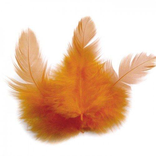 Piume di gallo 10 cm - arancio