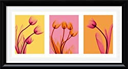 Tulips Trio by Steven N. Meyers Framed