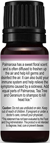 Palmarosa-Essential-Oil-10-ml-100-Pure-Undiluted-Therapeutic-Grade