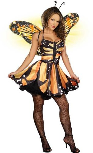 Monarch Fairy Adult Costume - Small
