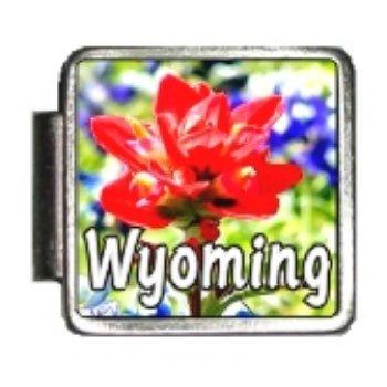 Wyoming State Flower Indian Paintbrush Photo Italian Charm Bracelet Link