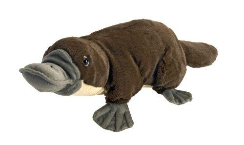 Platypus Cuddlekins Plush Toy