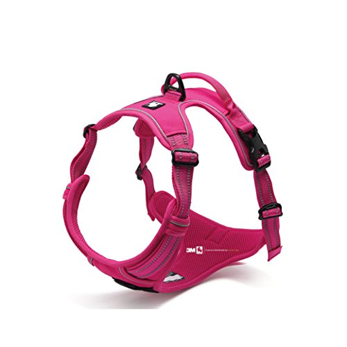 front-range-new-2016-true-love-design-dog-harness-no-pull-3m-reflective-stitching-for-improved-night