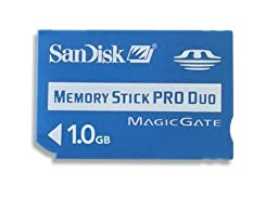 SanDisk 1 GB Memory Stick Pro Duo (SDMSPD-1024-A11) - Bulk Package