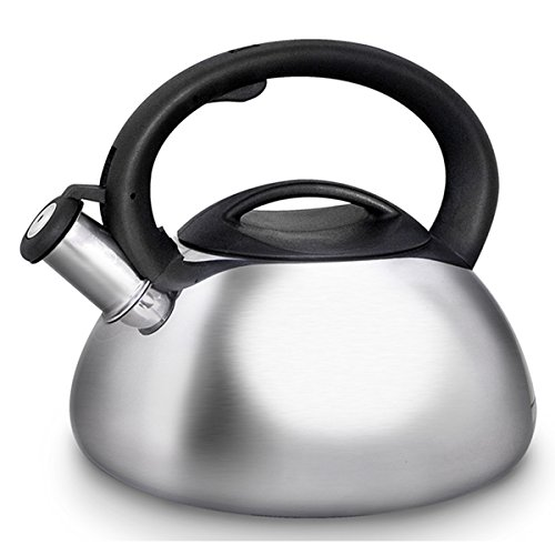 Primula PTK-6130 3 Qt Stainless Steel Catalina Whistling Tea Kettle (Ellipse Tea Kettle compare prices)