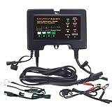 BatteryMINDer Charger/Maintainer/Desulfater - 12V, Model# 2012