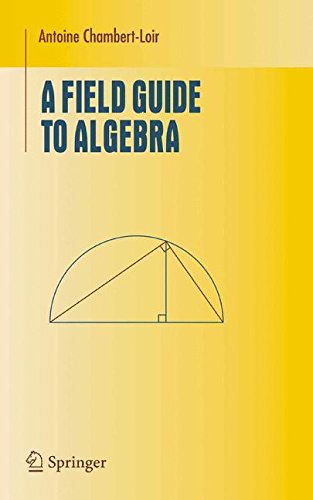A Field Guide to Algebra (Undergraduate Texts in Mathematics)