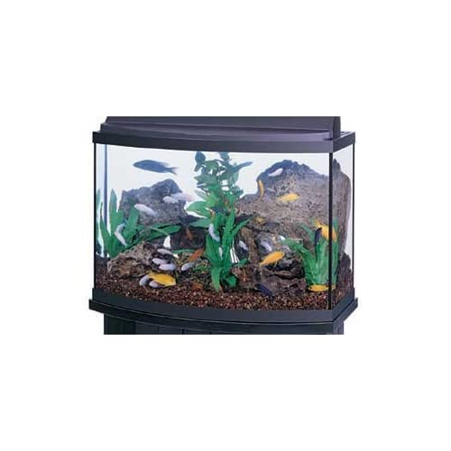 Bayshore large cylinder acrylic 15 gallon aquarium with for 15 gallon fish tank stand