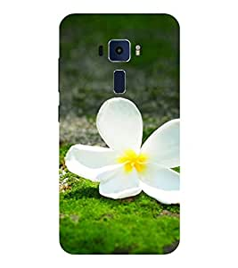 Evaluze flower Printed Back Cover for ASUS ZENFONE 3