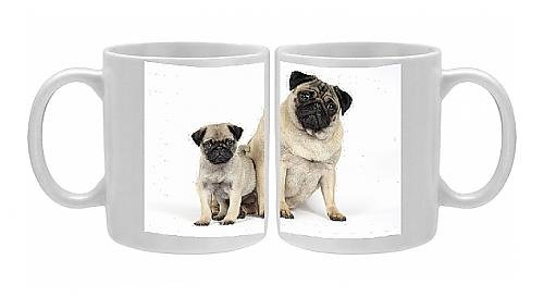 Photo Mug Of Dog. Pug ( Fawn ) With 7 Week Old Puppy front-962997