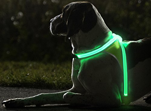 Noxgear LightHound - Visibility Vest for Dogs. Revolutionary Illuminated and Reflective Multicolored LED Fiber Optics (USB Rechargeable, Adjustable, Lightweight, Rainproof)