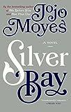 Silver Bay (Turtleback School & Library Binding Edition)