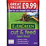 EverGreen Cut & Feed Lawn Food Refill