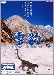 雪豹 Snow Leopard [DVD]