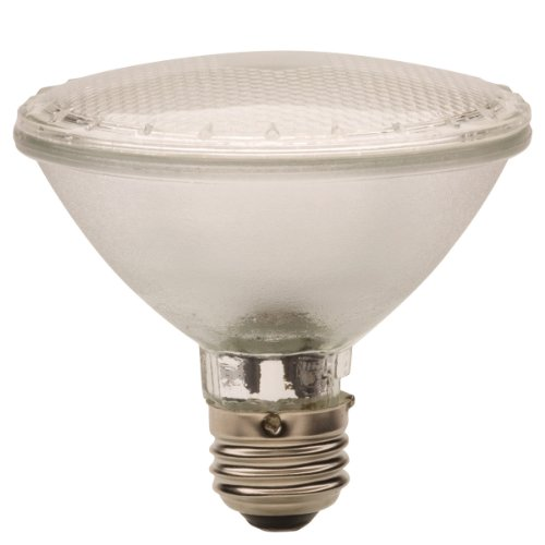 Globe Electric 7801801 Par30 Led Accent 3-Watt Light Bulb, Cool White