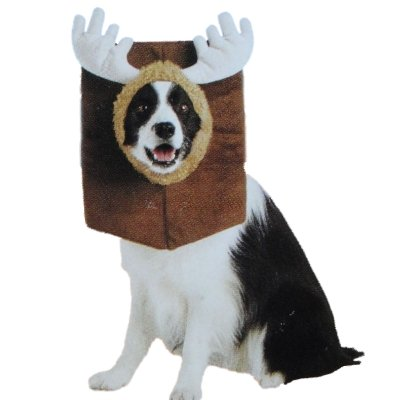 Mounted Moose Head Dog Costume Pet Large
