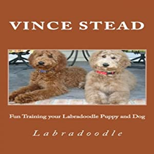 Fun Training Your Labradoodle Puppy and Dog | [Vince Stead]